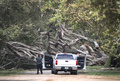 ハリケーン「イルマ」熱帯低気圧に 米フロリダで620万世帯停電