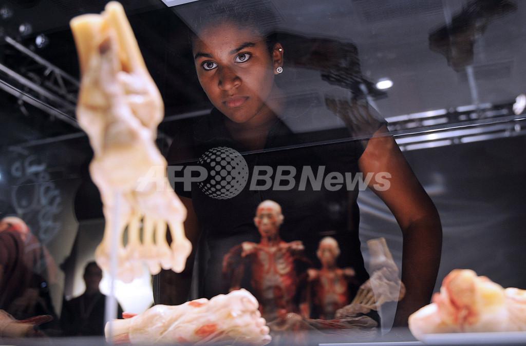 実物人体標本の展覧会、パナマで開催