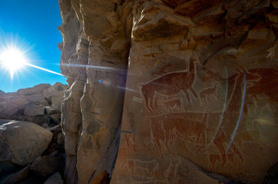 古代砂漠文化の秘密を明かすリャマの壁画、チリ・アタカマ