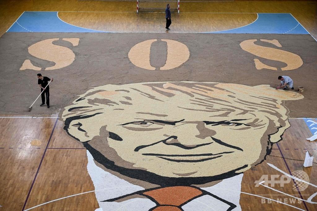 穀物の種で描いた巨大なトランプ氏、世界記録に挑戦