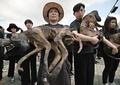 韓国の養犬業者ら、犬肉食べて気勢上げる 動物愛護団体のデモに対抗