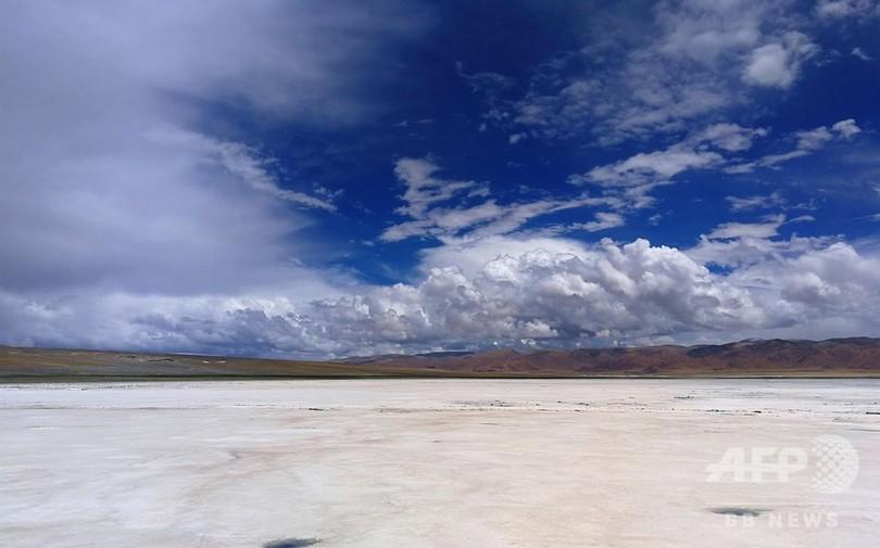 数百年塩を羊で運び続けた交易路 チベットの「塩羊古道」