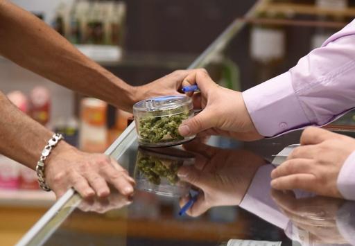 嗜好用大麻、合法化で鎮痛剤関連の死者20%減 米研究