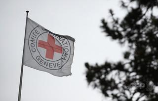 赤十字国際委員会でも買春、免職など20人以上 内部調査