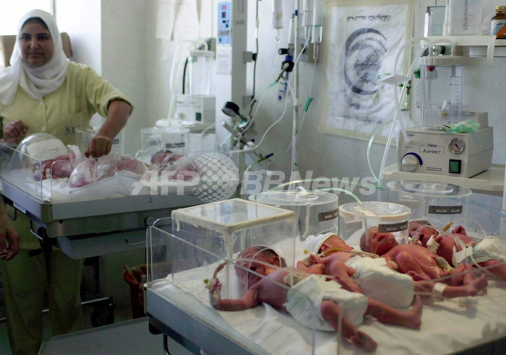 医師も驚く七つ子ちゃん誕生、エジプト