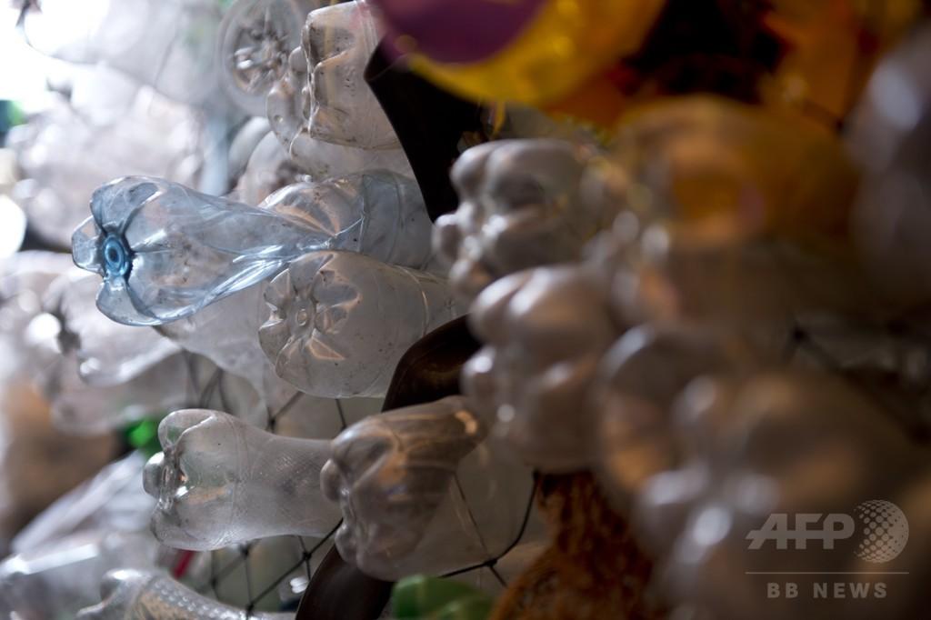 プラスチックを消化分解する酵素、研究過程で偶然作製 米英チーム
