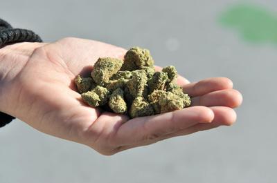 タイ、医療用大麻の合法化へ前進 実現すればアジア初