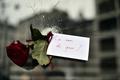 【AFP記者コラム】パリは「戦争」じゃない