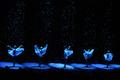 空気の精が舞う、カルロヴィ・ヴァリ国際映画祭開幕式