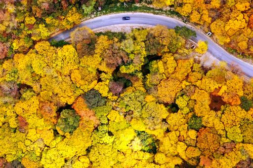【今日の1枚】錦秋に誘われてドライブ