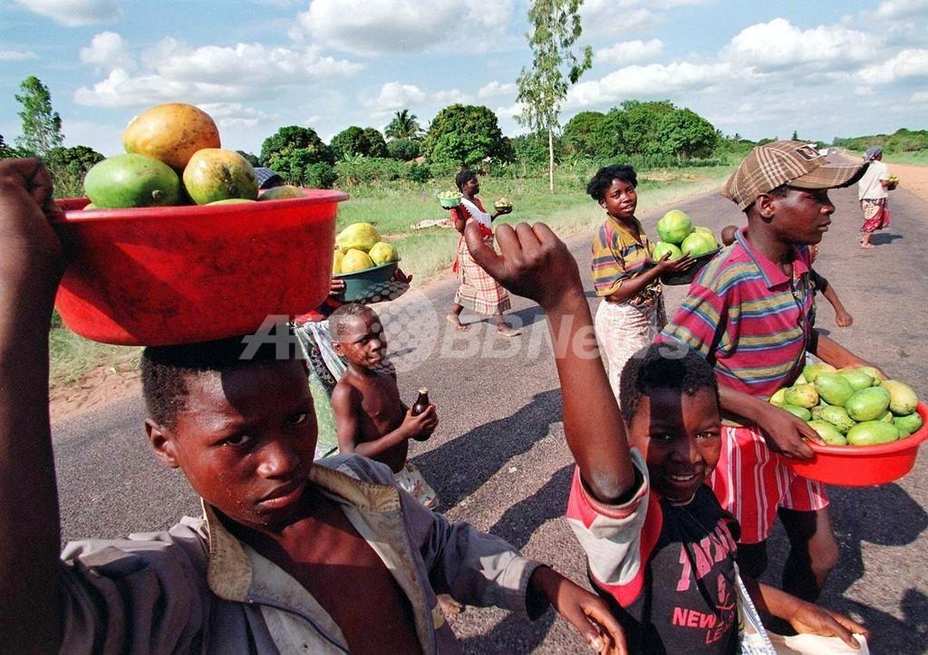 モザンビークでアフリカ最大規模のエタノール生産事業が開始へ