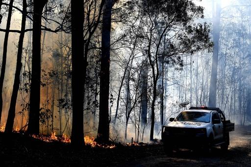 WRC最終戦が中止に、豪での森林火災を受け