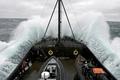 シー・シェパードが調査捕鯨を妨害、接触は日本側に責任と主張