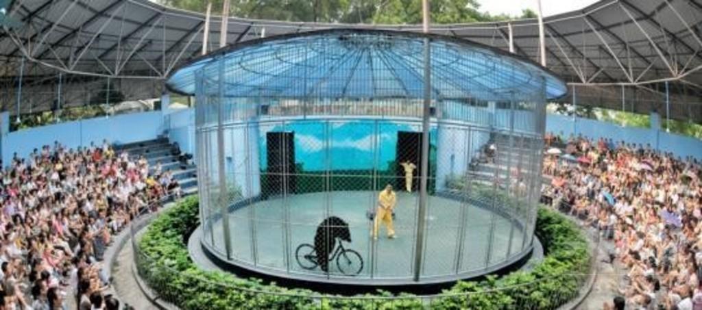 動物園内のサーカスショーに終止符  中国・広州