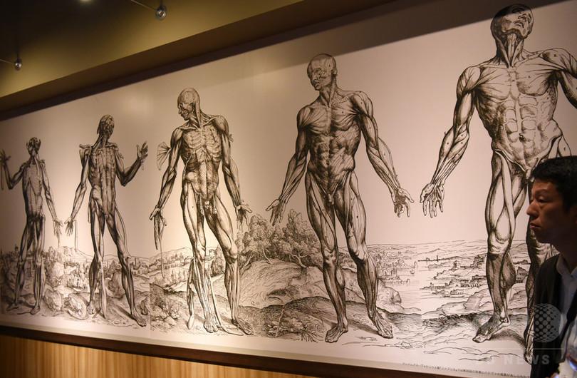 「永遠の謎」人体に迫る、ダビンチの手稿も 東京