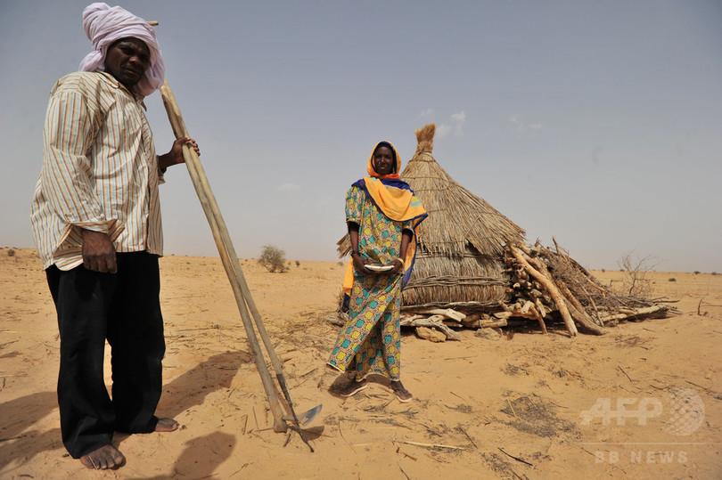 アフリカの農作物、気候変動で危機に 研究