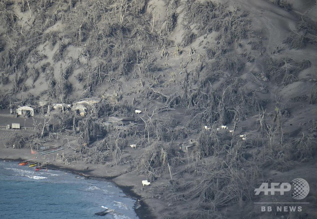 無人のはずが…噴火したタール火山周辺に人の気配 フィリピン