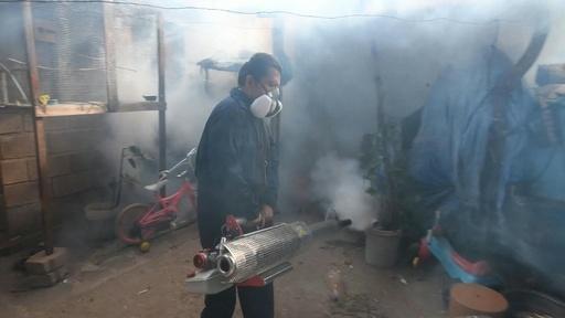 動画:中米ホンジュラスでデング熱流行、緊急事態宣言 一斉駆除も