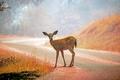 シカ数百頭密猟、男に刑務所で『バンビ』の鑑賞命令 米