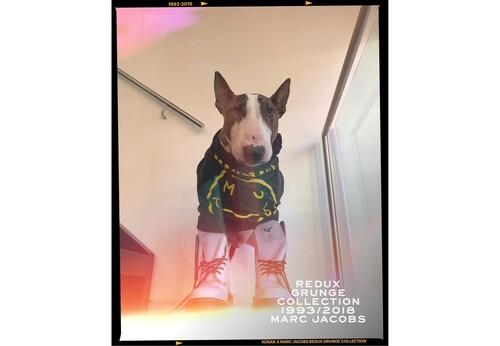 「マーク ジェイコブス」コダックとコラボ、カメラアプリ発表