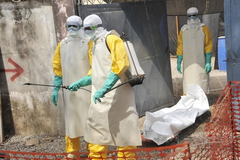 エボラ熱の死者、1万人超える WHO