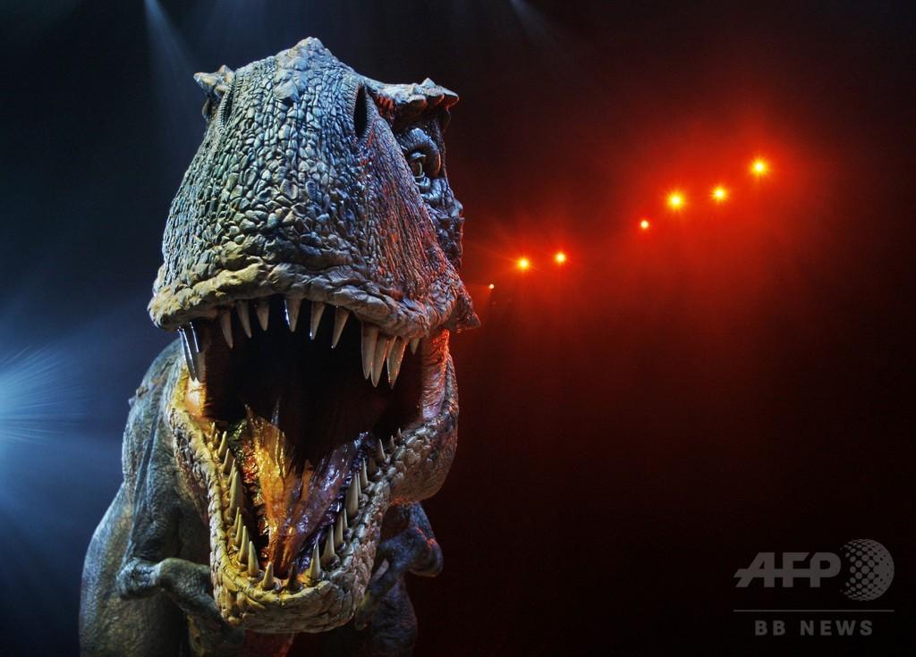 恐竜の体温「測定」、恒温か変温かの議論に終止符か 研究