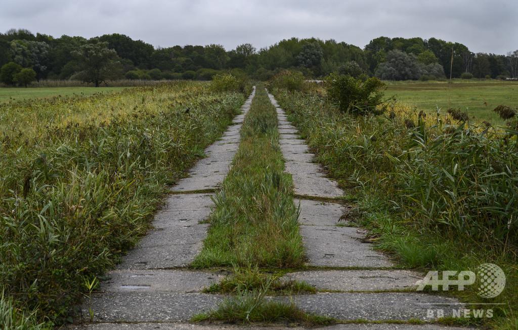 死のベルトから「グリーンベルト」に ドイツ旧国境の今