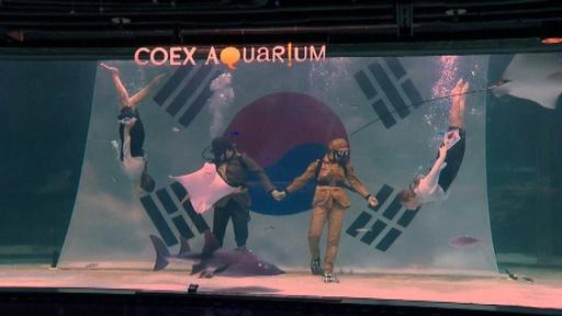 動画:韓国の水族館で慰霊の水中パフォーマンス、解放記念日「光復節」を前に
