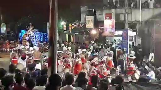 動画:スリランカで祭りの最中にゾウが暴走、17人負傷 暴れだす瞬間の映像