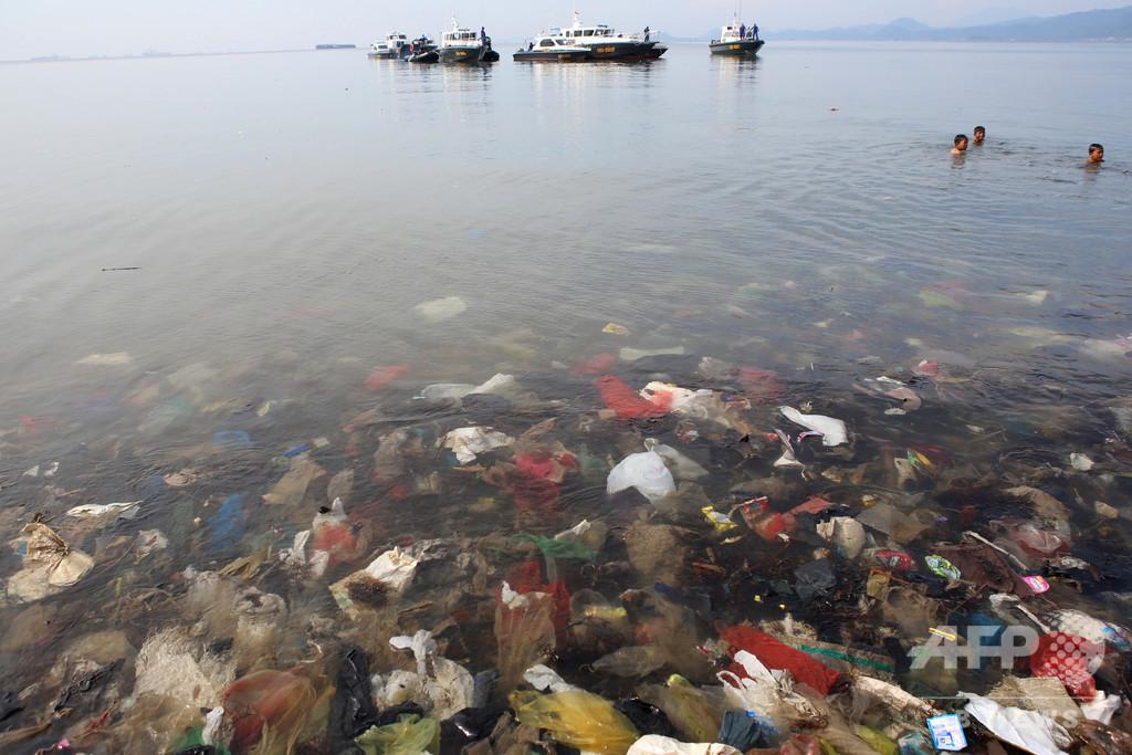 世界最深部の生物もプラスチック汚染 研究