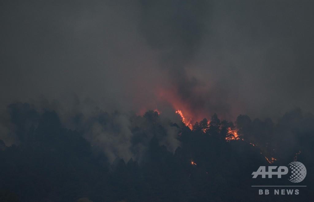 チベット自治区林芝市で森林火災、死傷者なし 中国