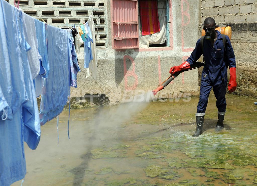 マラリア対策に30億ドル拠出へ、国連のハイレベル会合