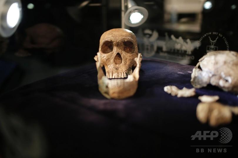 初期ヒト属「ホモ・ナレディ」 現生人類と共存か 化石研究
