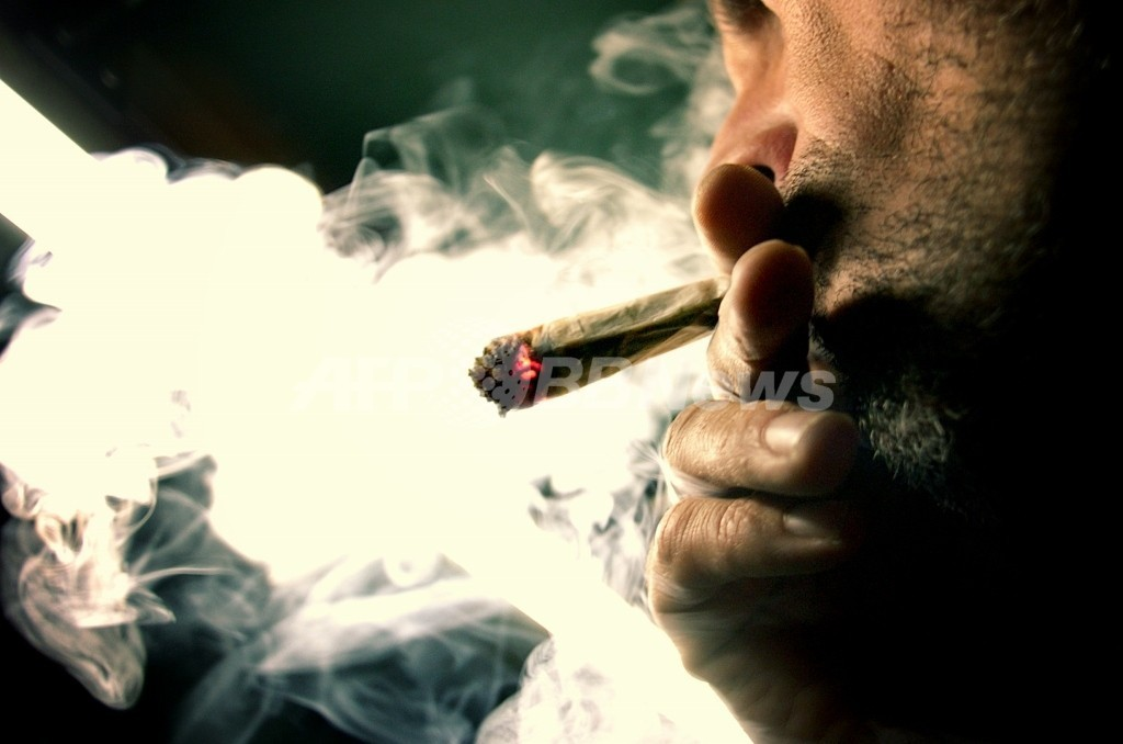 世界の違法薬物使用者は最大で約2億7100万人 2009年推計