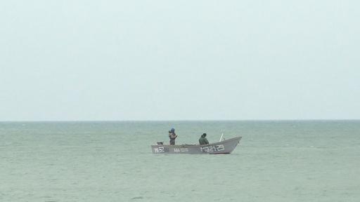 動画:アザラシもキャビアも消える…カスピ海を襲う開発汚染と気候変動