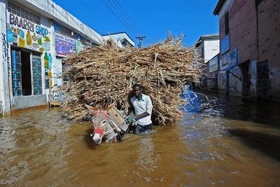 ソマリア豪雨、ロバで避難する住民たち