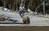 フィリピン台風、墓場から流し出された遺体