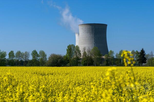 気温上昇2度未満の目標達成には原子力必須、米気候科学者
