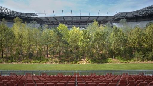 動画:サッカー場が森に オーストリアで期間限定アート