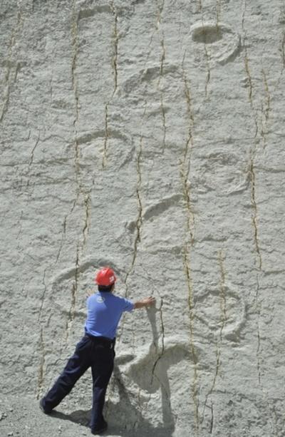 ボリビアの恐竜足跡化石群に危機、世界最大級の「カル・オルコ」