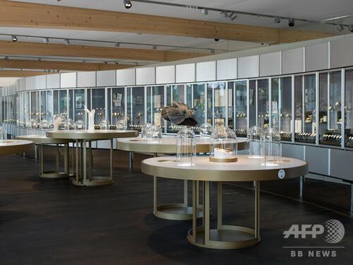 「オメガ」新ミュージアム、スイスにオープン
