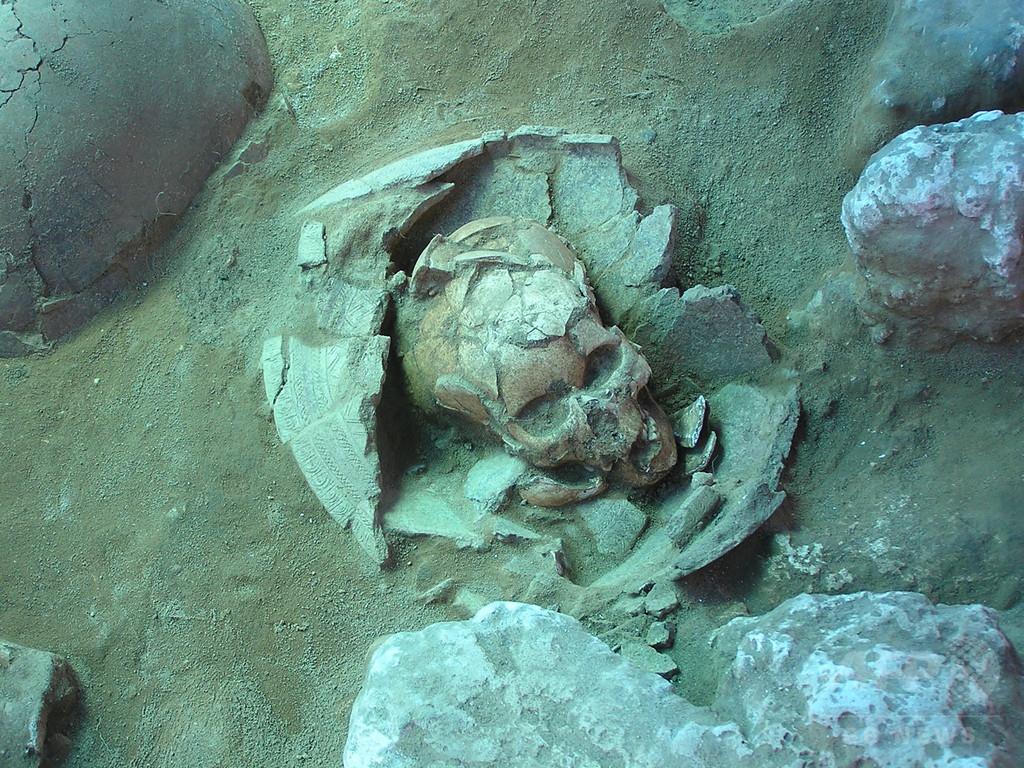 南太平洋バヌアツとトンガ、島民の祖先はアジア人 研究で明らかに