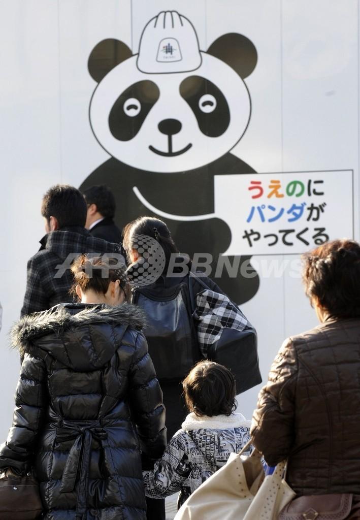 上野にパンダがやってくる!街は歓迎ムード
