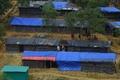 ロヒンギャがバングラデシュ人を斬殺、難民の大量流入で犯罪増加