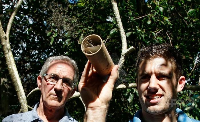 不妊化した蚊を大量放虫、感染症対策 米フロリダ州マイアミ
