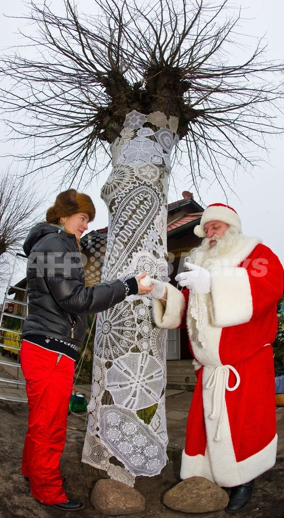 クリスマスに備え街路樹もレースでおめかし、独