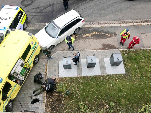 ノルウェーで男が救急車奪い暴走、発砲後に逮捕