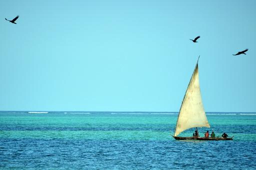 「息がもたないほど君が好き」…米男性、海中プロポーズで溺れて死亡
