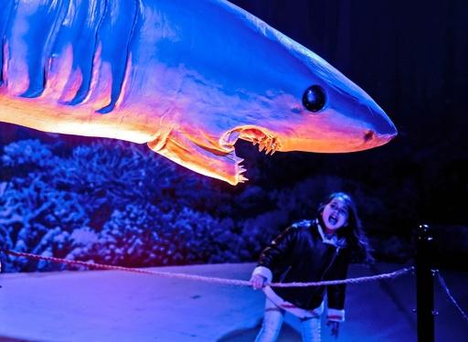 危うくガブリ!? 動く原寸大の「海の恐竜展」 キプロス