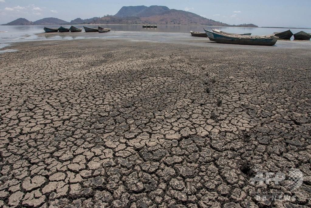 むき出しになった湖底、気候変動で深刻化する干ばつ マラウイ
